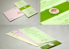 Parrot Theme Designer Wedding Card GC 2018