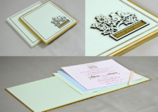 Parrot Theme Lasercut Wedding Card RN 2561